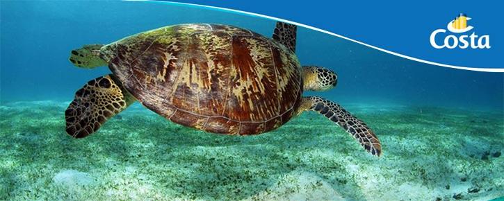 Costa Croisière publie la 10ème édition de son rapport «Sea You Tomorow»